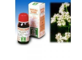 SP.VALERIANA 36 TM 50ml