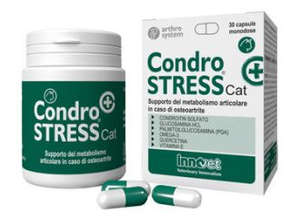 CONDROSTRESS+CAT 30 Cps
