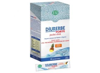 DIURERBE Pocket 24 Drink Ananas