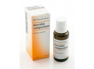 Aesculus Comp 30ml Gtt Heel
